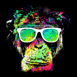 a4d39498f922 Technicolor monkey · by clingcling